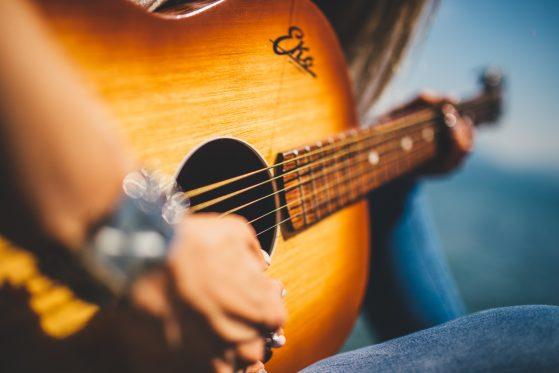 Hire Singer Guitarist